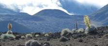 Surreale Szenerie im Haleakala-Krater auf Maui
